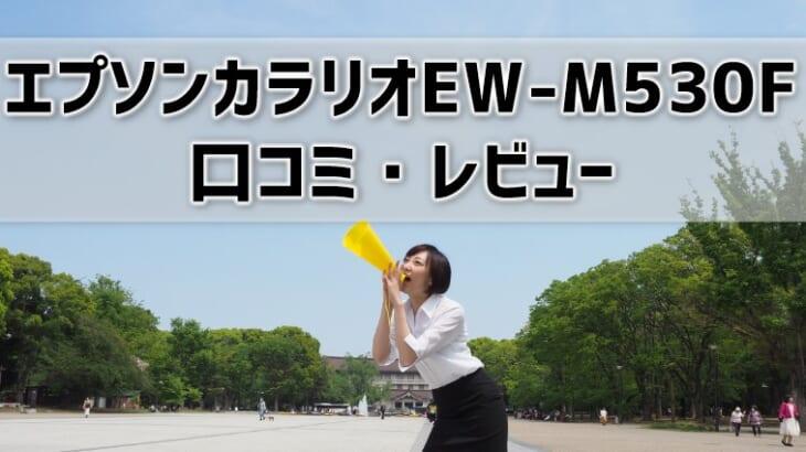 【エプソンカラリオEW-M530Fの口コミ・レビュー】元家電販売員が評判を本音で解説!