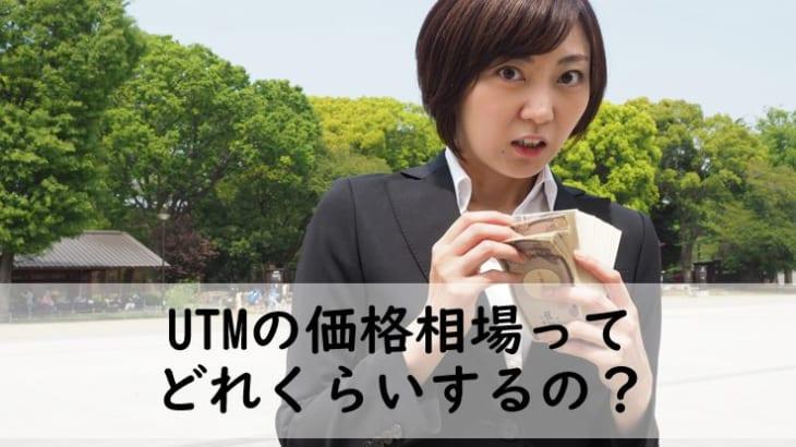 【UTMの価格相場】10~30人の会社なら料金は20万円が目安!